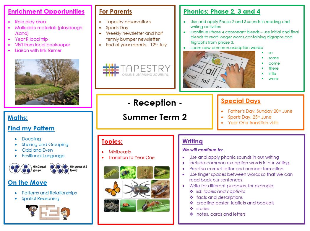 Summer 2 topic web